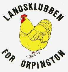 orpington